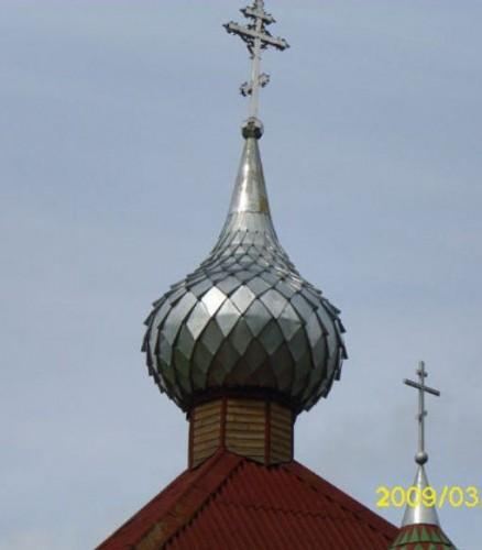 купол чешуйчатый Домашковичи