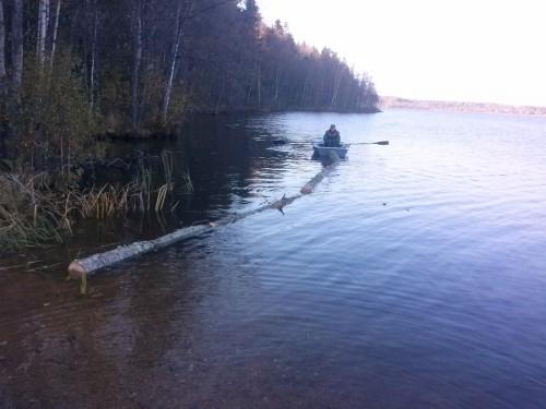 Сплавка леса по воде